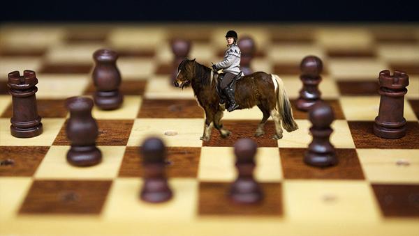Ett schackbräde där en islandshäst med ryttare är omringad av övriga pjäser. Bilden är ett montage