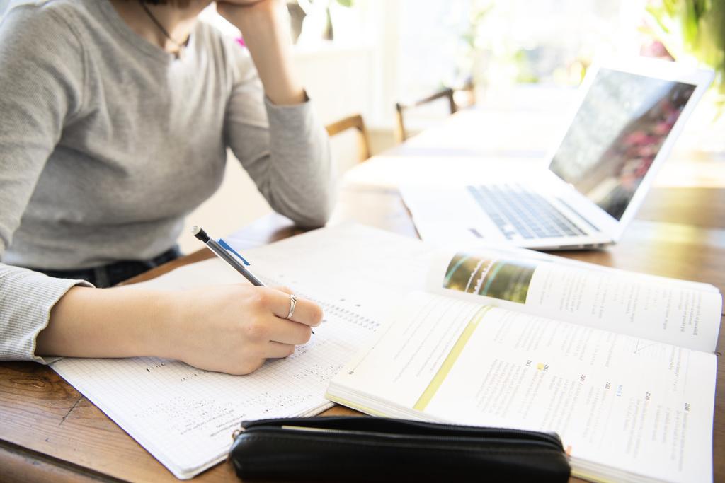 En elev som pluggar. Bild: Henrik Montgomery /TT